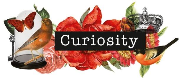 Curiosity_Logo