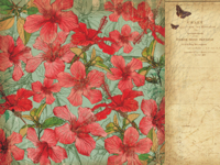 Tropicana 12x12 Scrapbook Paper - Hibiscus
